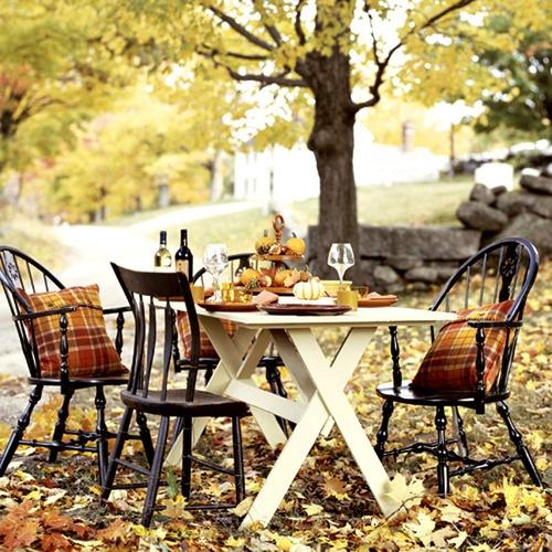 wijn picknick
